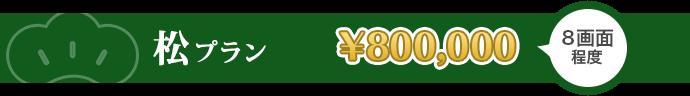 松プラン 800,000円 8画面程度